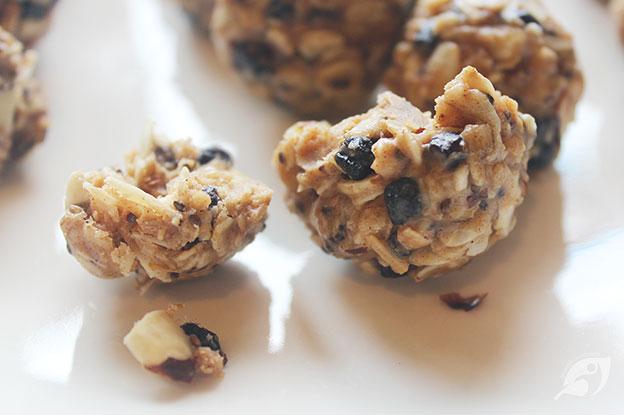 Gluten-Free Food: Wild Blueberry Almond Energy Bites