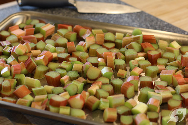 Rhubarb on a tray ready for freezing